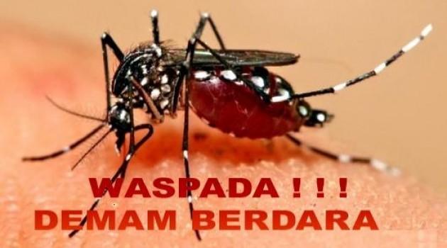 Ulasan Lengkap Mengenai Demam Berdarah Dengue (DBD)