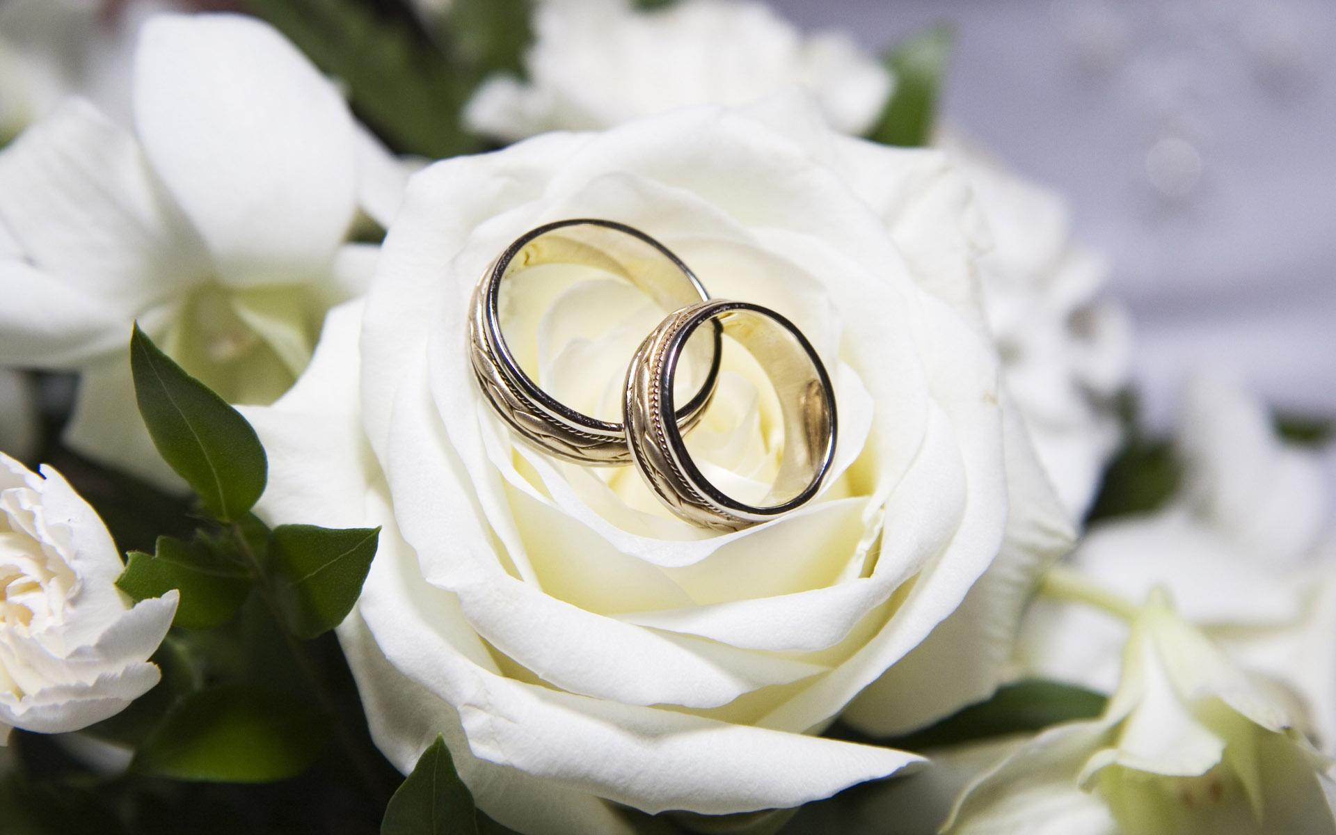 Keuntungan Web Wedding
