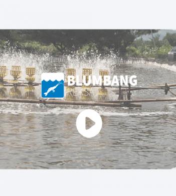 BlumbangRekza
