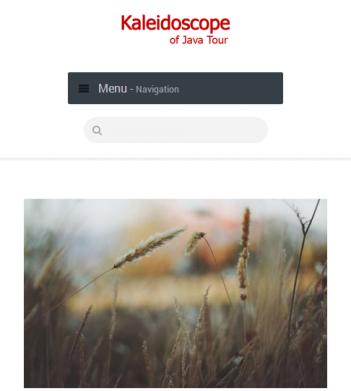 Website Profile Kaleidoscopeofjavatour.com